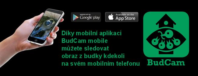 BudCam Mobile 2